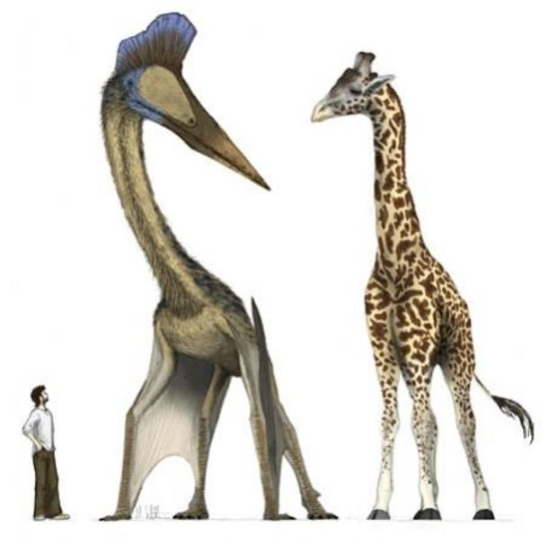Dino Riders Quetzalcoatlus by Mark Witton